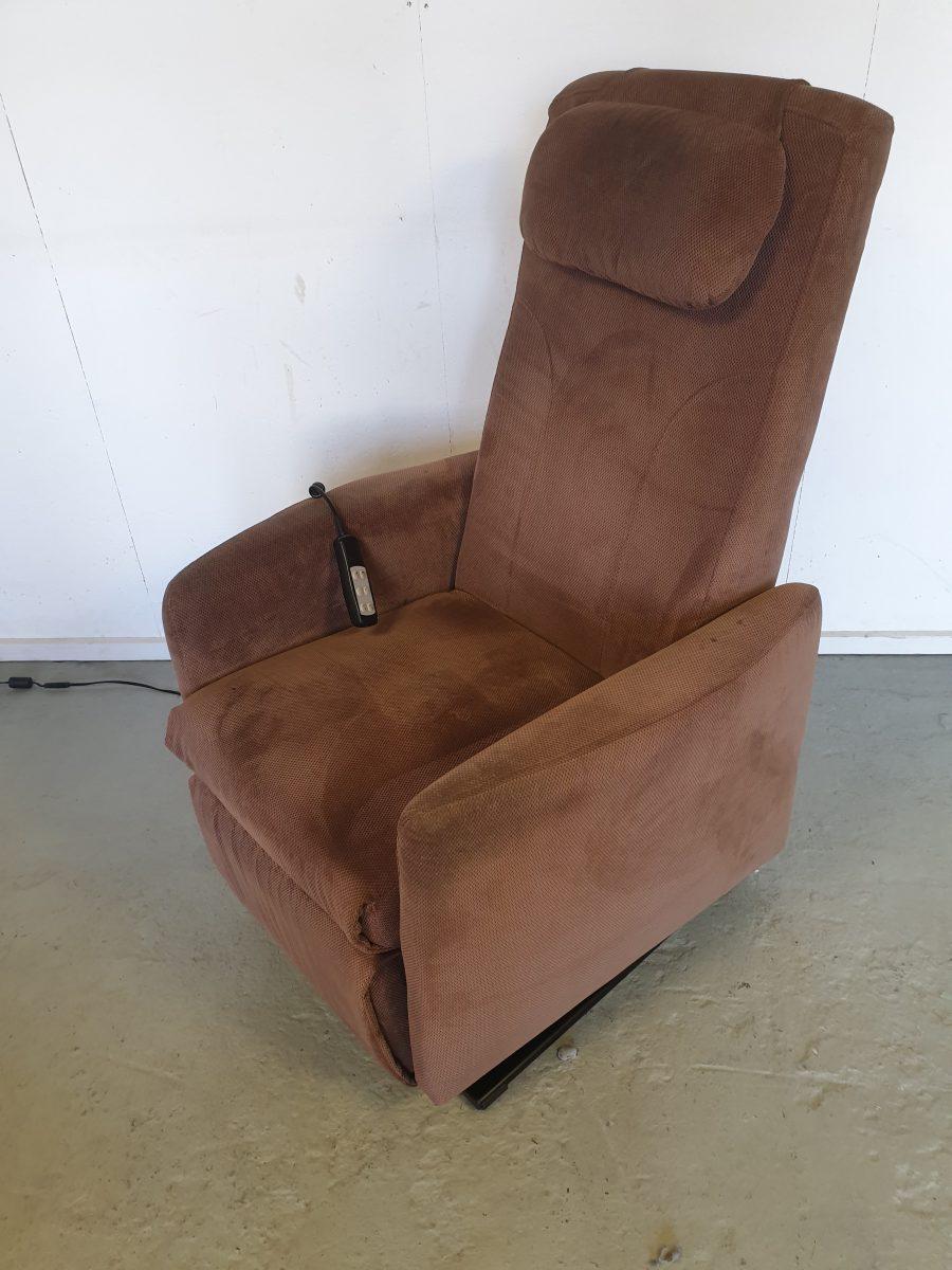 Doge bellino bruin sta op stoel